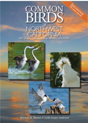 Common Birds Of Northwest California cover